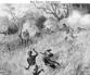 62 Slave Trade in Africa